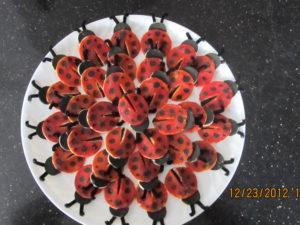 jali lady bugs40